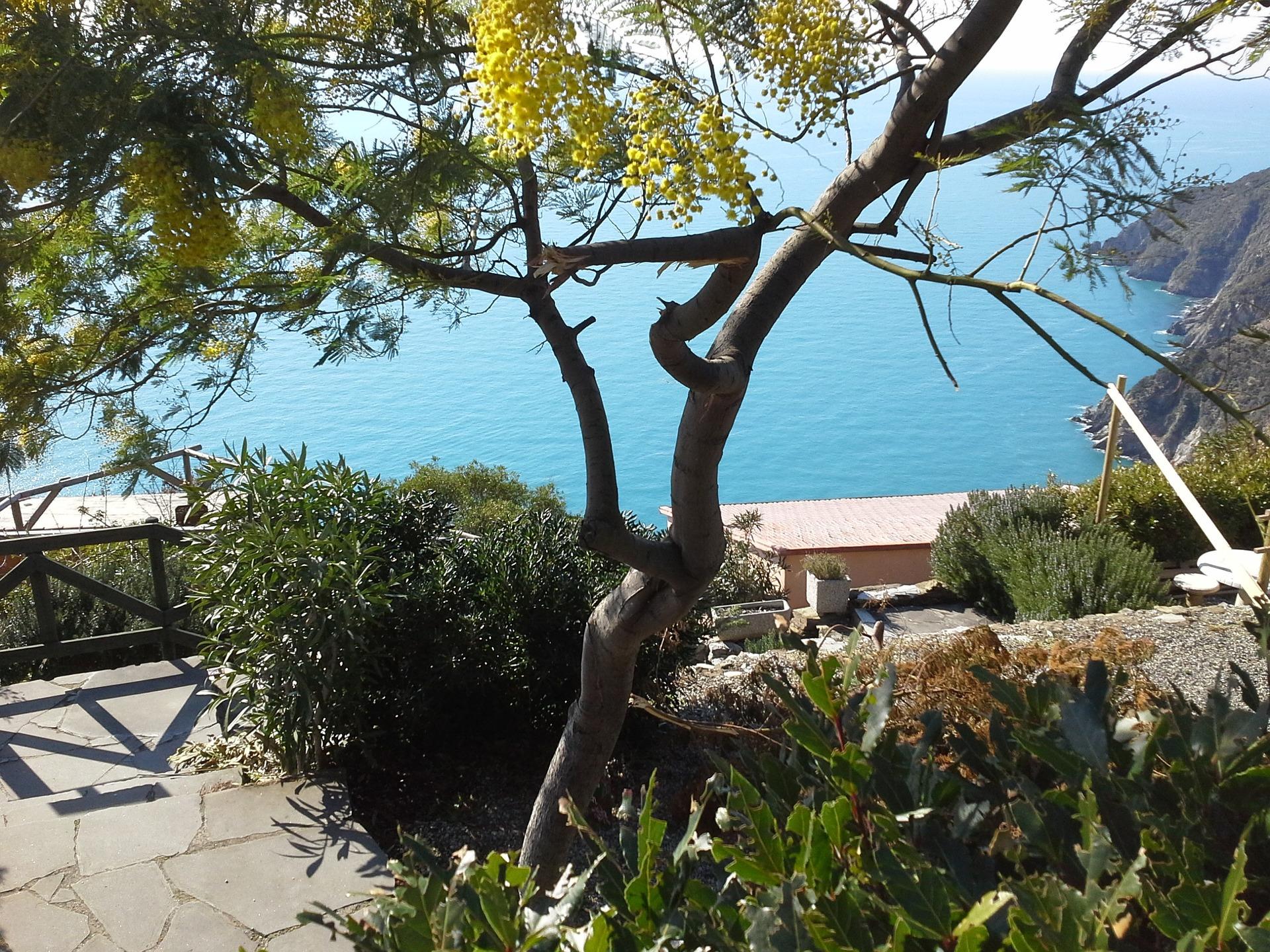7-daagse wandelvakantie Cinque Terre Italië